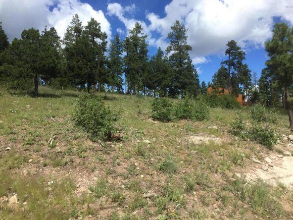 22 Cr 2074, Alpine, AZ 85920 Photo 1