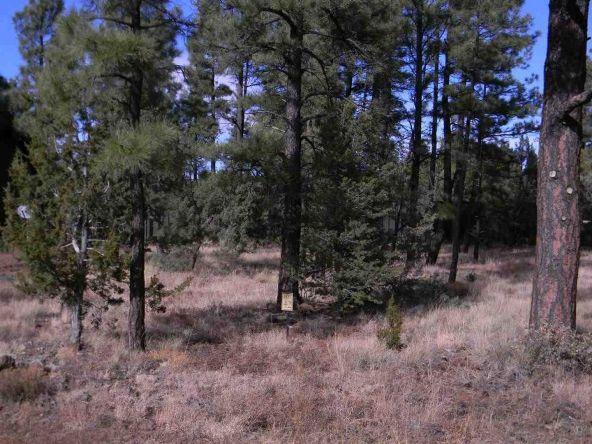 5438 E. S. Elk Springs, Lakeside, AZ 85929 Photo 1