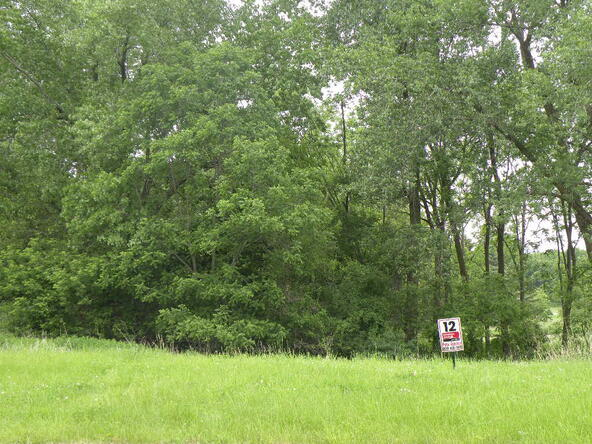Lot 8 Combe St., Ripon, WI 54971 Photo 2