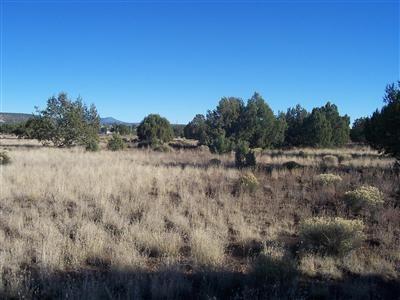 1357 W. Pinto Dr., Ash Fork, AZ 86320 Photo 28