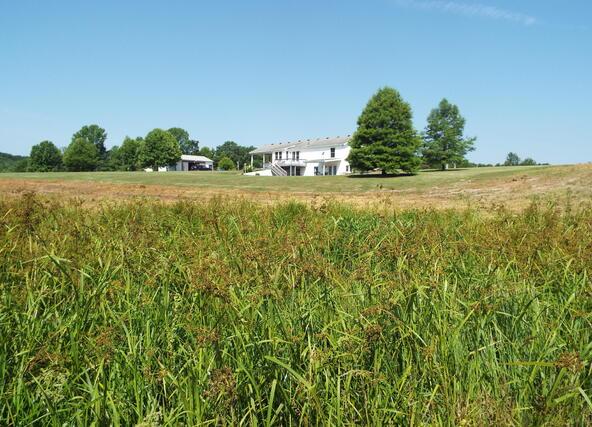 565 Cat Hollow Rd., Elk Horn, KY 42733 Photo 11