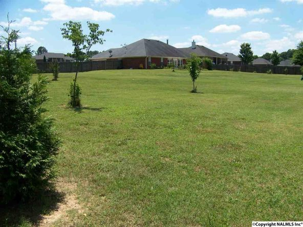 122 Hannah Marie Pl., Toney, AL 35773 Photo 35