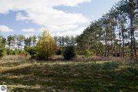 Home for sale: 0012 Lipp Farm Rd., Benzonia, MI 49616