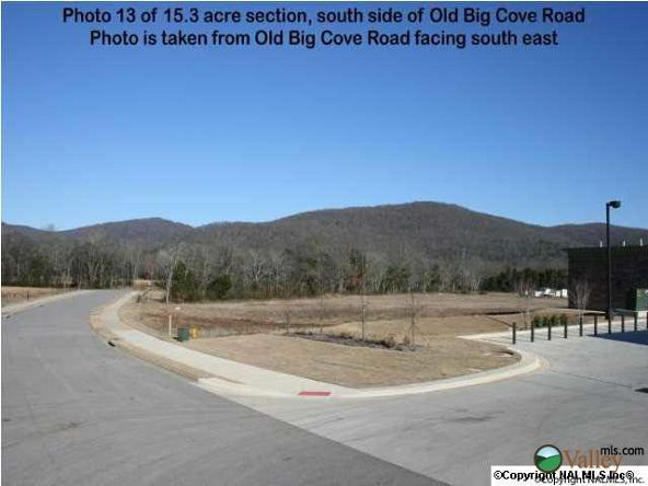 5703 U S. Hwy. 431, Brownsboro, AL 35741 Photo 16