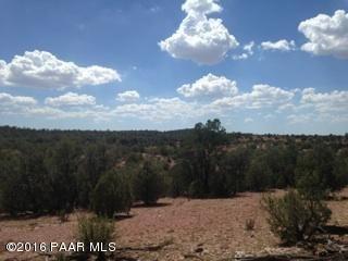 171 Friendship/Conwayden, Ash Fork, AZ 86320 Photo 31