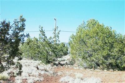 1227 W. Yukon Dr., Ash Fork, AZ 86320 Photo 9
