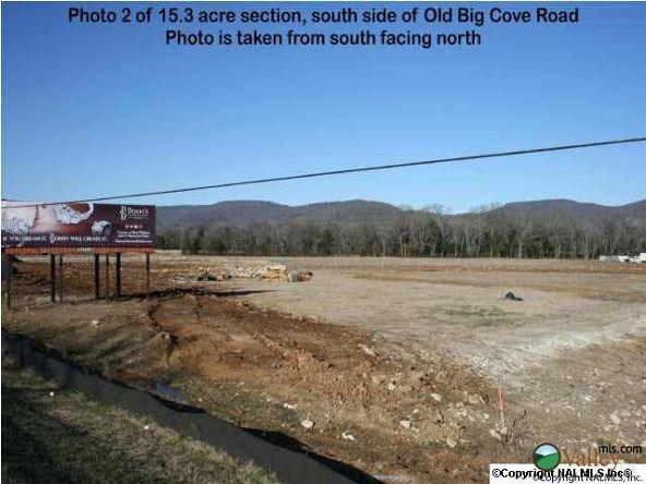 5703 U S. Hwy. 431, Brownsboro, AL 35741 Photo 2