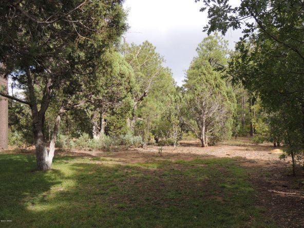1911 S. Sierra Park Trail, Show Low, AZ 85901 Photo 57