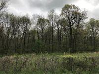Home for sale: Farm Rd. 63, Bois D'Arc, MO 65612