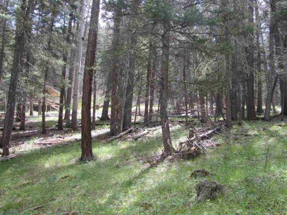 119 W. Pecos Canyon Estates Rd., Tererro, NM 87573 Photo 25