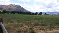 Home for sale: Lot 1, Hilda Ln., Okanogan, WA 98840