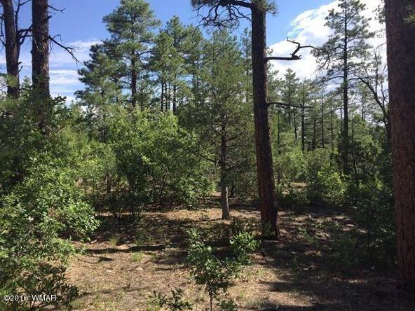 1875 S. Pleasant View Dr., Show Low, AZ 85901 Photo 9