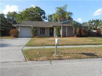 Home for sale: 1811 Nova Dr., Valrico, FL 33596