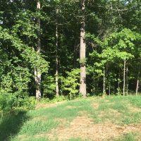 Home for sale: 000 Coleman Creek Cir., Gay, GA 30251