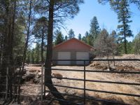 Home for sale: 2556 Bull Elk Dr., Happy Jack, AZ 86024