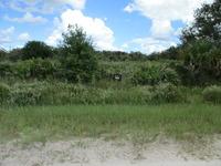 Home for sale: 17590 N.W. 260th St., Okeechobee, FL 34972