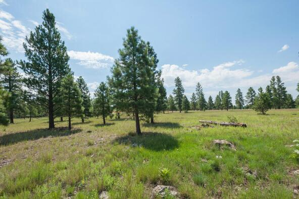 8r Lockett Ranches, Flagstaff, AZ 86001 Photo 19