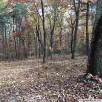 Home for sale: 1 County Rd. 166 (Citadel Rock Road), Fort Payne, AL 35967