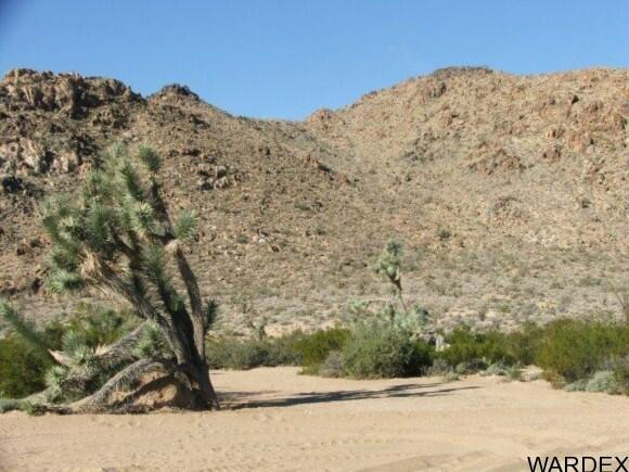 3529-A Arroyo Rd., Yucca, AZ 86438 Photo 3