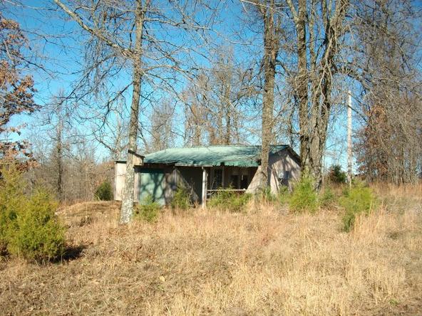 1059 Pleasant Run Rd., Mammoth Spring, AR 72554 Photo 14