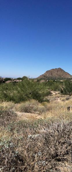 25180 N. 107th Way, Scottsdale, AZ 85255 Photo 20