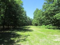 Home for sale: 11 Acres North Farm Rd. 93, Walnut Grove, MO 65770