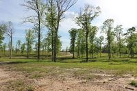 Home for sale: 20 Acres Hwy. 42, Sumrall, MS 39482