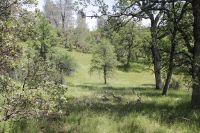 Home for sale: 000 Donkey Mine Rd., Oak Run, CA 96069