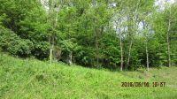 Home for sale: Tbd Edgewater Dr., Cedar Bluff, VA 24609