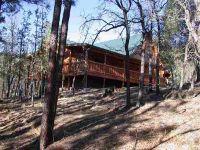 Home for sale: . County Rd. 2173, Nutrioso, AZ 85932