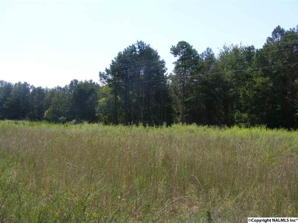 1030 County Rd. 664, Valley Head, AL 35989 Photo 5