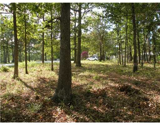92 Holiday Island Dr., Holiday Island, AR 72631 Photo 10