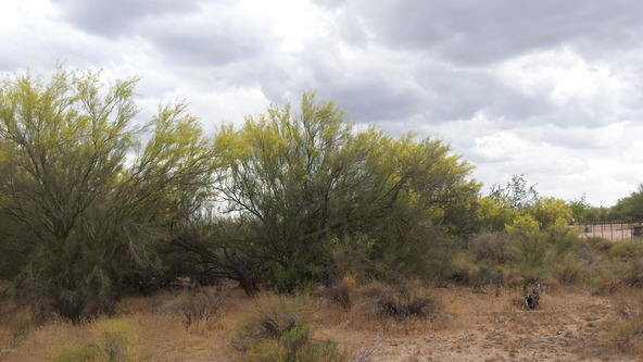 163 E. Dixileta Dr., Scottsdale, AZ 85262 Photo 3