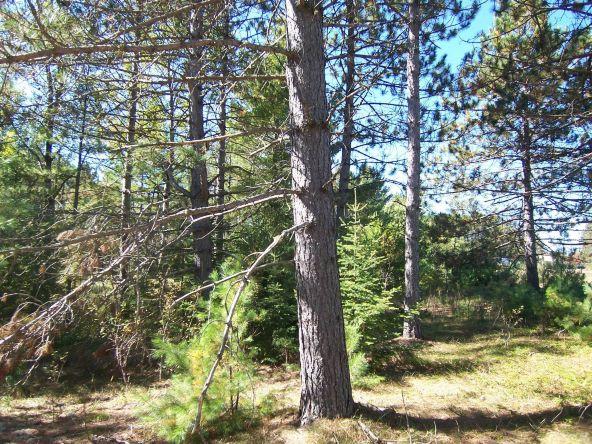 Next To 1781w Hwy. 51, Mercer, WI 54547 Photo 3