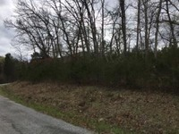 Home for sale: Lot 22 Virgin Bluff, Galena, MO 65656