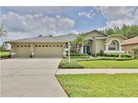Home for sale: 1530 Avada Ct., Trinity, FL 34655