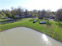 Home for sale: 132 Fox Ridge Dr., New Memphis, IL 62266