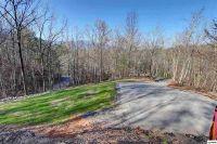 Home for sale: 734 Deer Path Ln., Gatlinburg, TN 37738