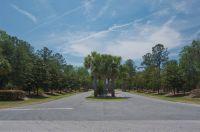 Home for sale: 00 N.W. 141st Avenue, Williston, FL 32696