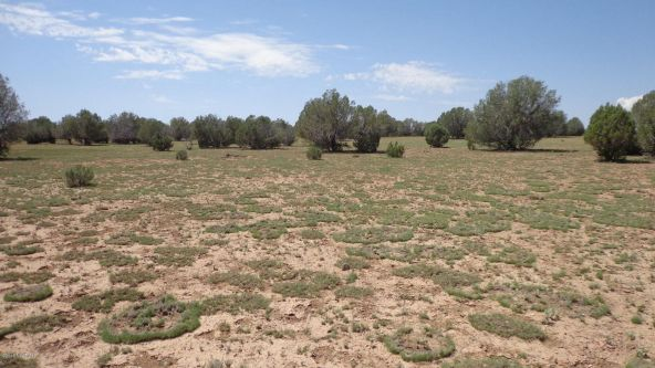 261 Juniperwood Ranch Lot 261, Ash Fork, AZ 86320 Photo 22
