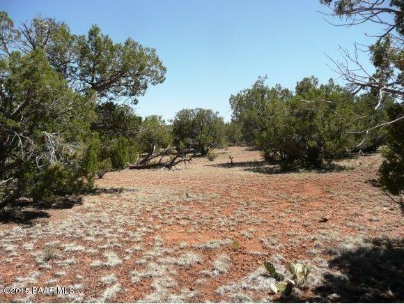 1024 Sierra Verde Ranch, Seligman, AZ 86337 Photo 5