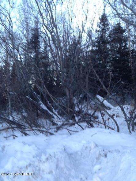 12801 Midori Dr., Anchorage, AK 99516 Photo 8