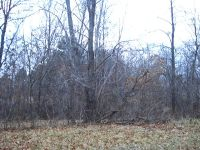 Home for sale: Lot 18 Lake Wildwood Dr., Varna, IL 61375