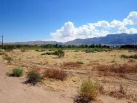 Home for sale: Joshua Tree, Littlefield, AZ 86432