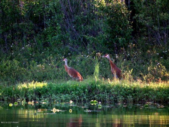 13776 W. Airigin Dr., Big Lake, AK 99652 Photo 11