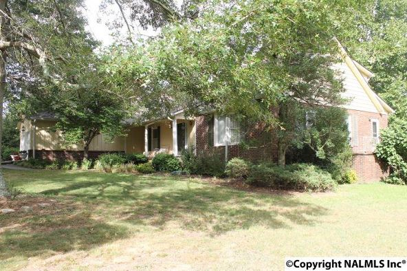 797 County Rd. 522, Fyffe, AL 35971 Photo 48