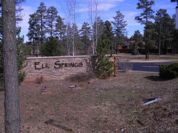 5424 E. S. Elk Springs, Lakeside, AZ 85935 Photo 2
