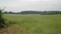Home for sale: 43.4 +/-Ac Sandy Springs Rd., Anderson, SC 29625