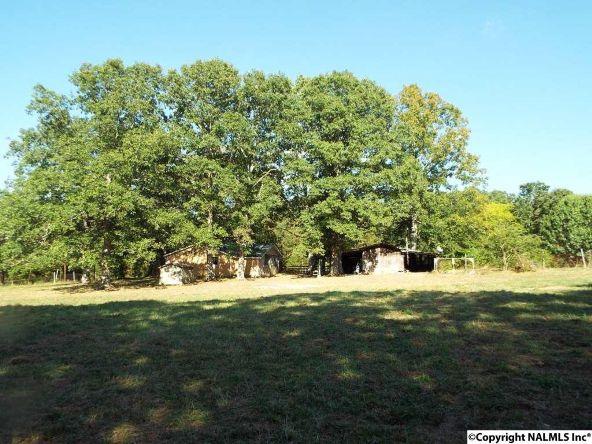 1654 County Rd. 641, Mentone, AL 35984 Photo 31
