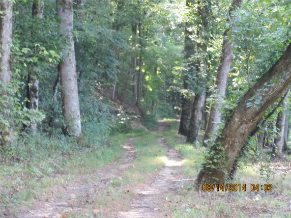 1865 County Rd. 99, Gaylesville, AL 35973 Photo 5